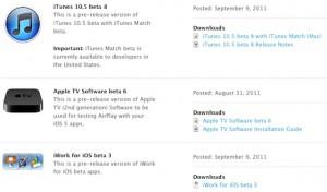 iTunes 10.5 beta verzia